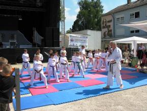 b_290_217_16777215_00_images_stories_2014_15_1_Wahlkurse_Karate.jpg